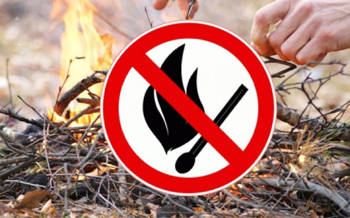 В Советском районе продолжает действовать особый противопожарный режим