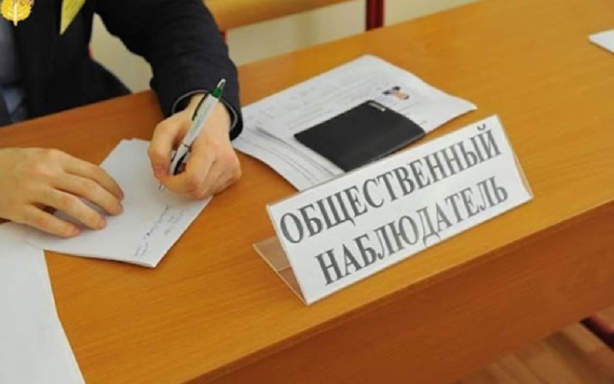 В Советском районе онлайн-семинар проходил накануне под руководством координатора наблюдения за выборами Светланы Поздняковой.