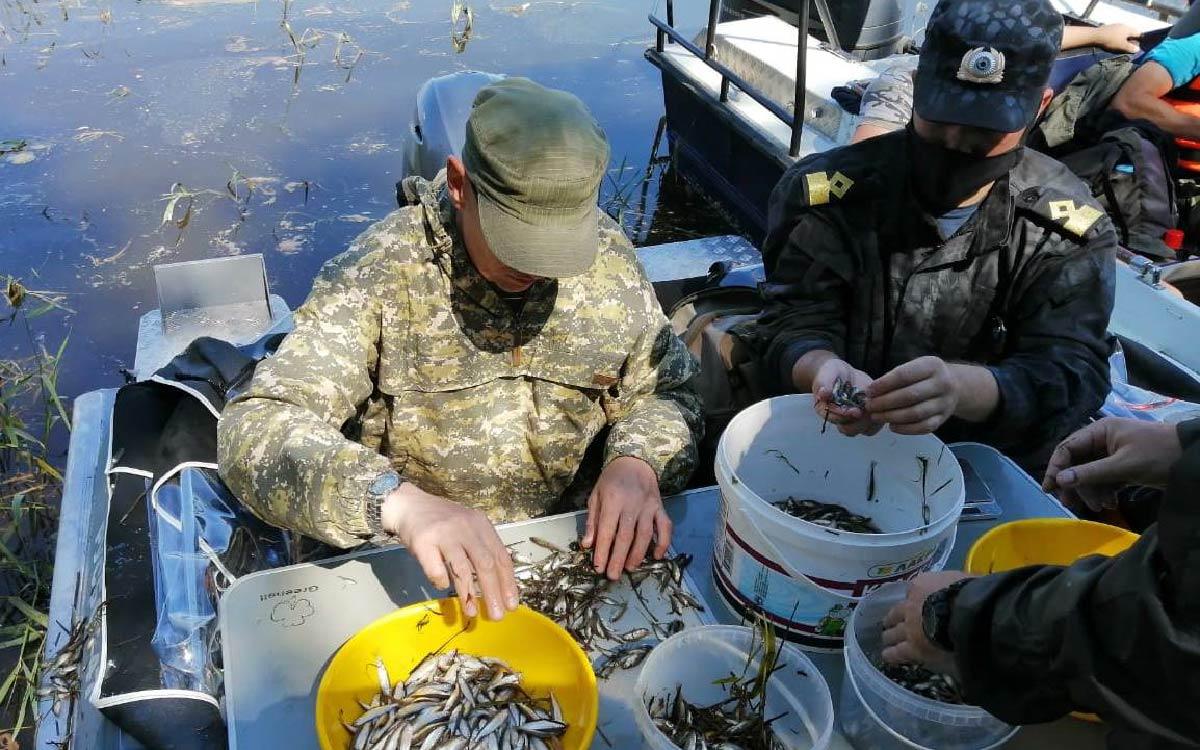 С 1 сентября 2021 г. вступает в силу приказ Министерства сельского хозяйства Российской Федерации от 30 октября 2020 г. № 646 «Об утверждении Правил рыболовства для Западно-Сибирского рыбохозяйственного бассейна» (далее-Правила рыболовства).