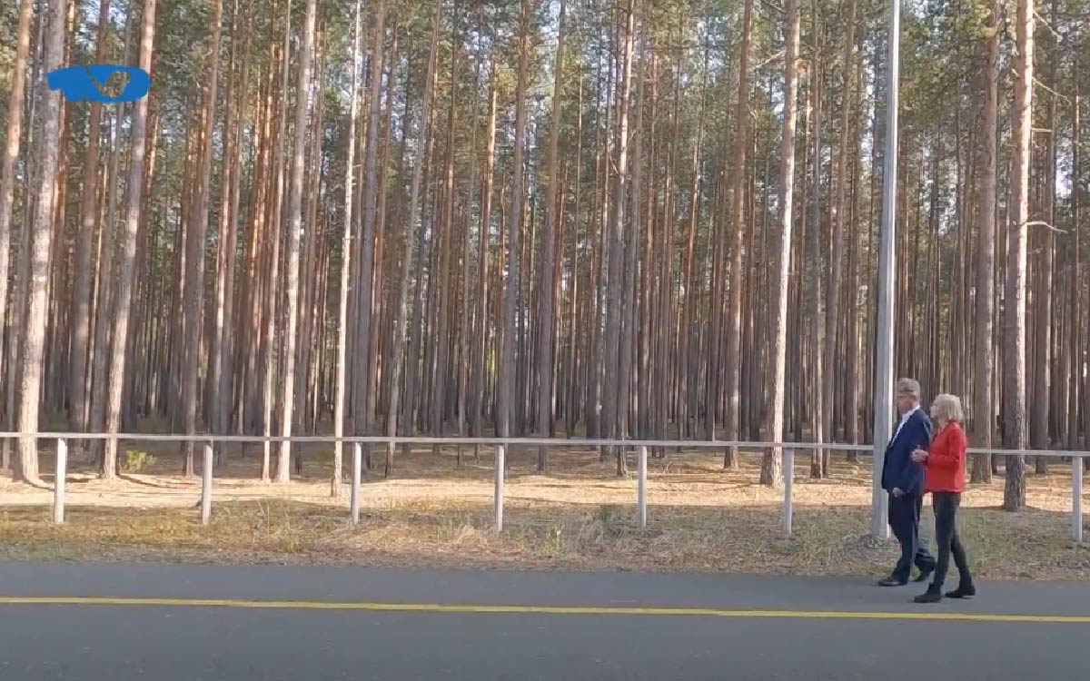 Главный врач Югорской городской больницы рассказал, почему ему так нравится лес и сколько нужно гулять, чтобы быть здоровым.