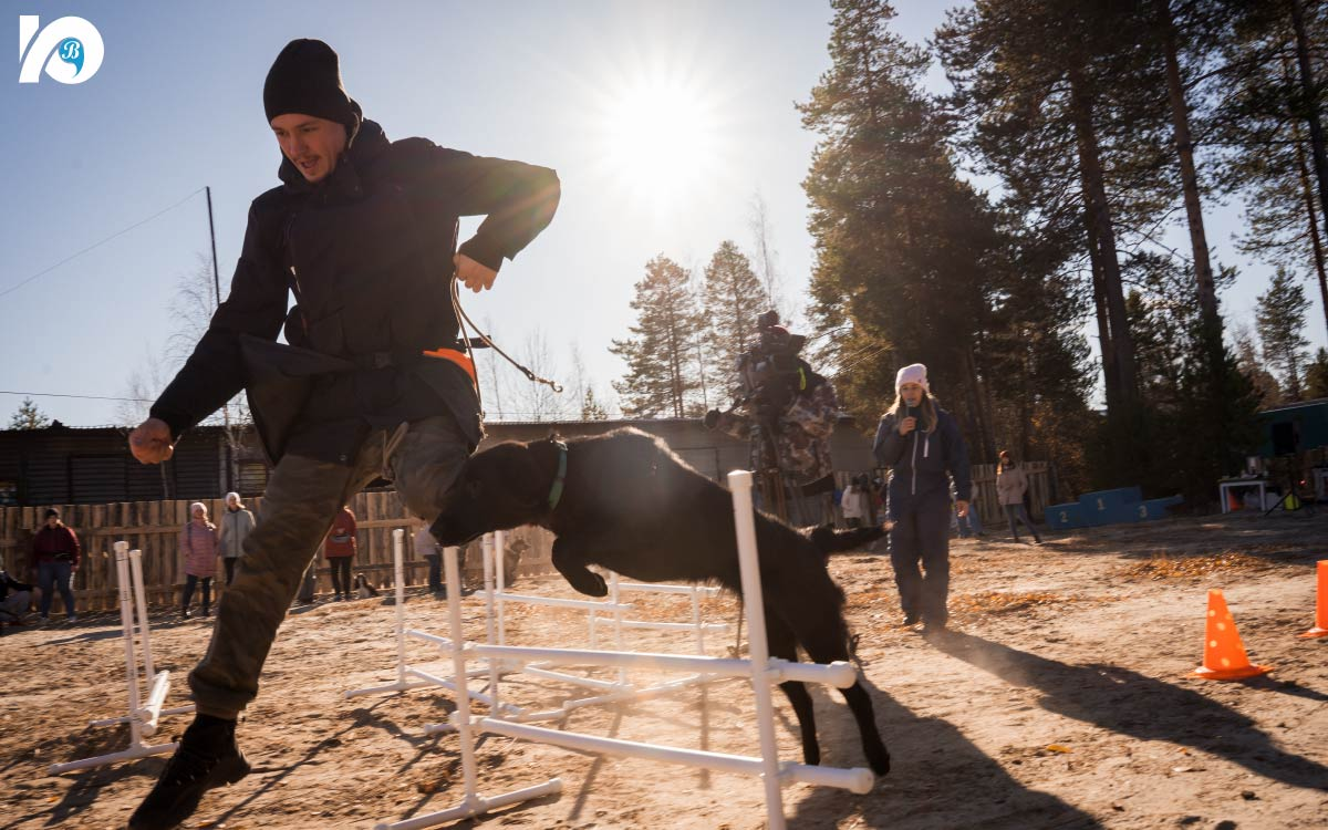 В Югорске открылась площадка для выгула собак