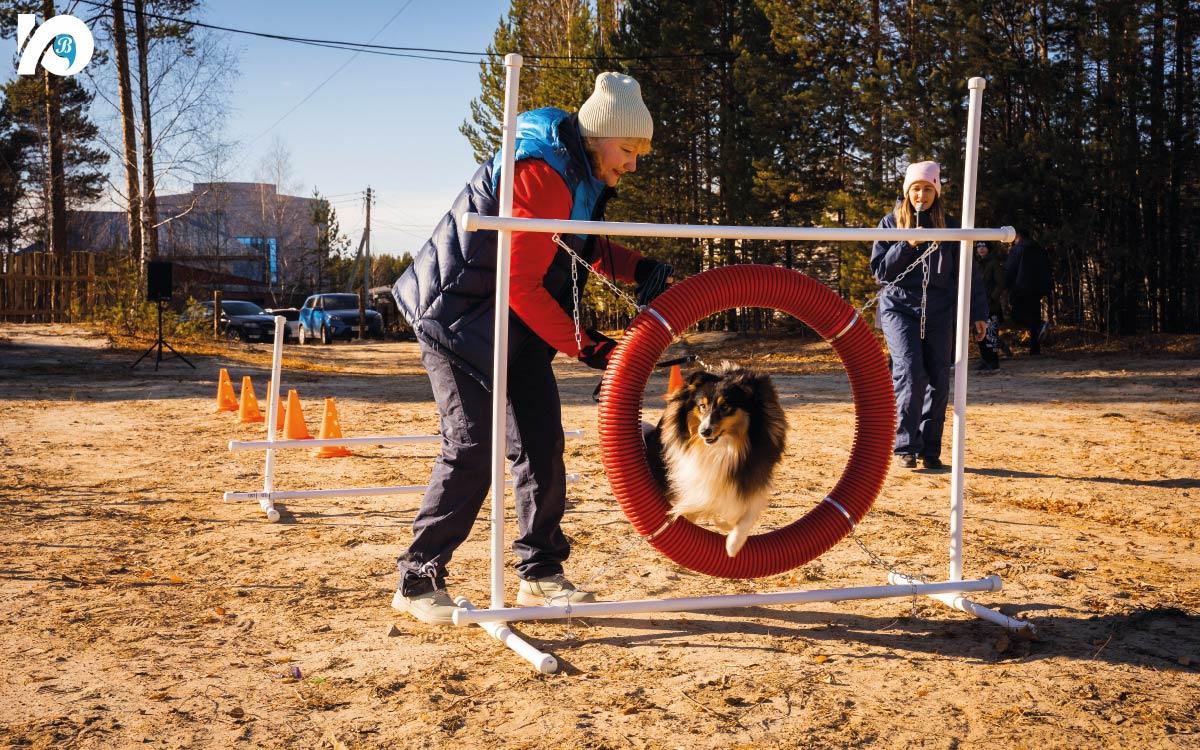 В Югорске открылась площадка для выгула собак 3