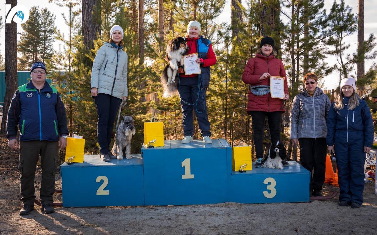 В Югорске открылась площадка для выгула собак 5